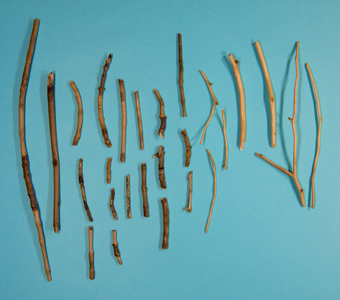 http://lexthompson.com/files/gimgs/20_08-debarked-sticks-substitutionary-atonement-for-the-neighbors-dogs.jpg